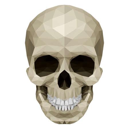 horrid: Illustration of crystal skull on white background