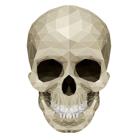 Skull with mosaic pattern. Illustration on white Stock Vector - 27439442