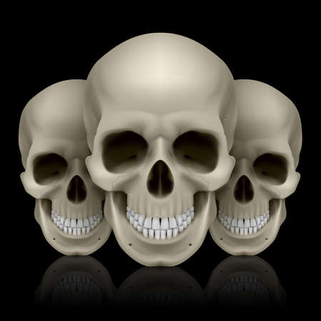 Illustration of three skulls with reflection on black background Stock Vector - 27439462