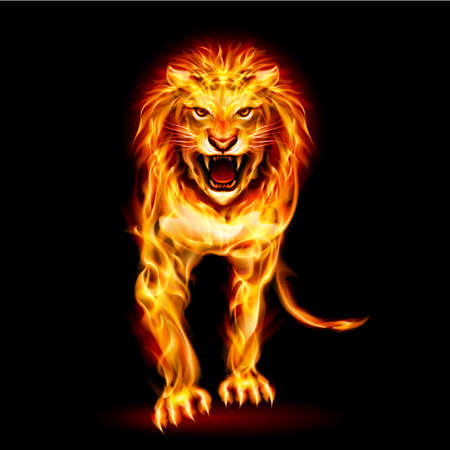 Illustration of fire lion isolated on black background Vector