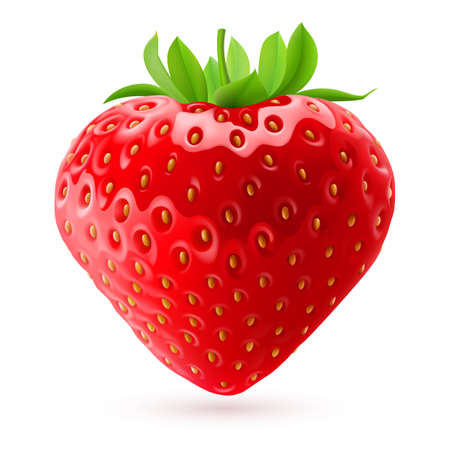 Appetizing fresh strawberry isolated on white background. Realistic illustration Ilustracja
