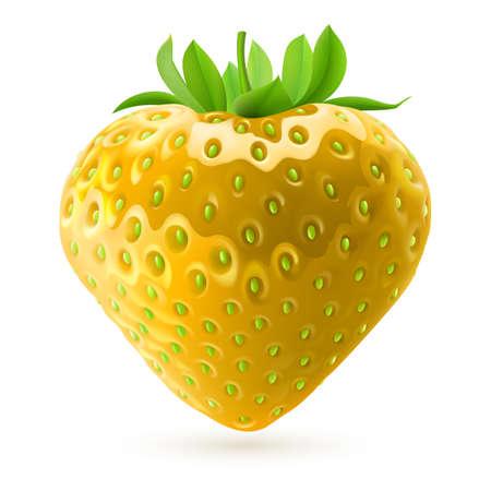 Ilustración realista de fresas de color amarillo sobre fondo blanco Foto de archivo - 28157750