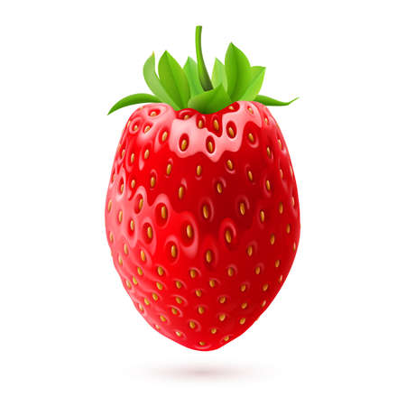 rich in vitamins: Illustration of fresh strawberry isolated on white background Illustration
