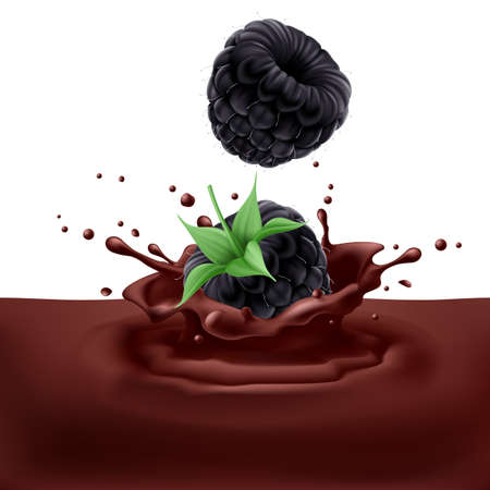 chocolaty: Appetizing blackberries dipping into chocolate with splashes Illustration