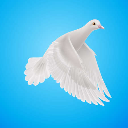 Flying white dove on blue sky background. Symbol of peace Illustration