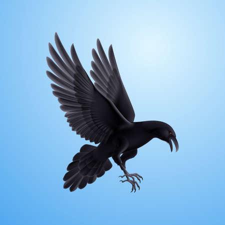 blackbird: Aggressive black raven. Illustration on blue sky background