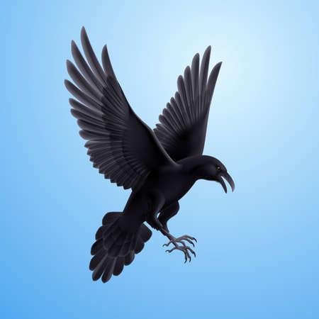 Illustration of aggressive black raven on blue sky background  Vector