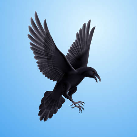 Illustration of aggressive black raven on blue sky background  Illustration