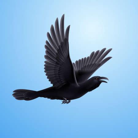 Illustration of flying black raven on blue sky background Vector