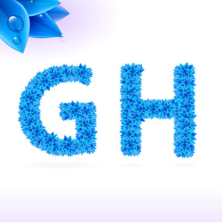 sans: Sans serif font with blue leaf decoration on white background. G and H letters