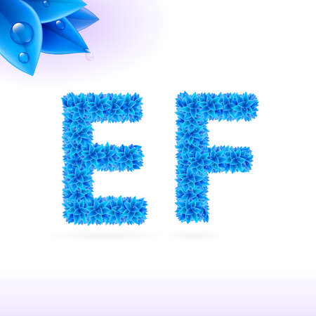 e white: Sans serif font with blue leaf decoration on white background. E and F letters