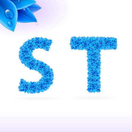t background: Sans serif font with blue leaf decoration on white background. S and T letters