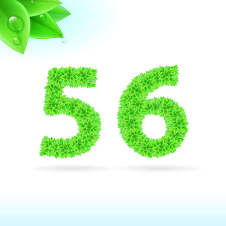 serif: Sans serif font with green leaf decoration on white background. 5 and 6 numerals Illustration