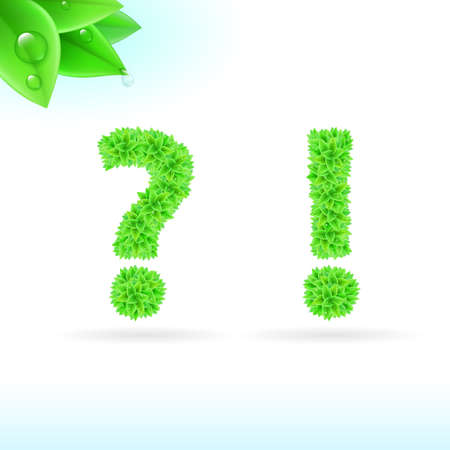 exclamatory: Sans serif font with green leaf decoration on white background. Question and exclamation marks