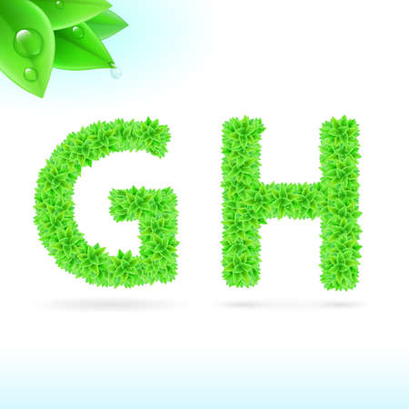 serif: Sans serif font with green leaf decoration on white background. G and H letters