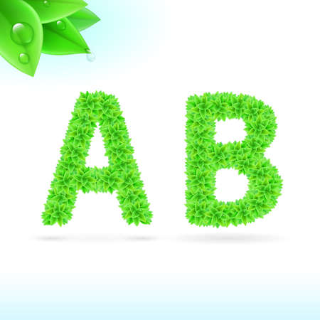 Sans serif font with green leaf decoration on white background. A and B letters Vector