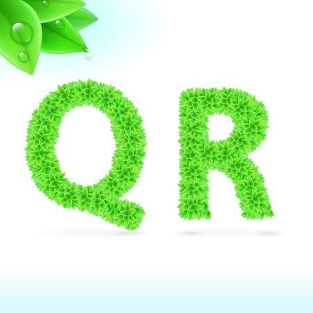 sans serif: Sans serif font with green leaf decoration on white background. Q and R letters