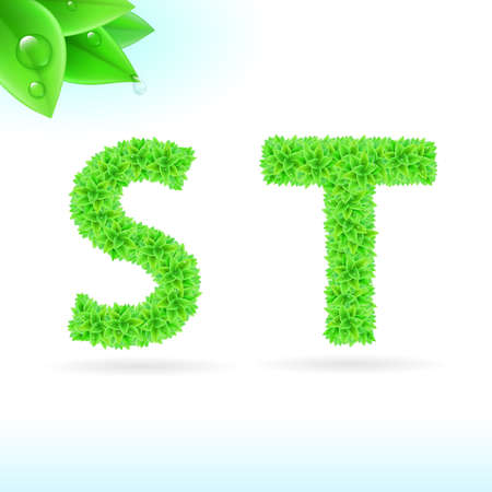 t background: Sans serif font with green leaf decoration on white background. S and T letters