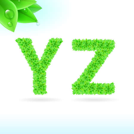 sans: Sans serif font with green leaf decoration on white background. Y and Z letters