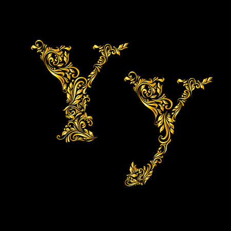 Richly decorated letter y in upper and lower case. Illustration