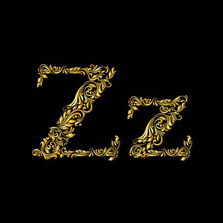 Lettre «z» en majuscules et minuscules Richement décoré.