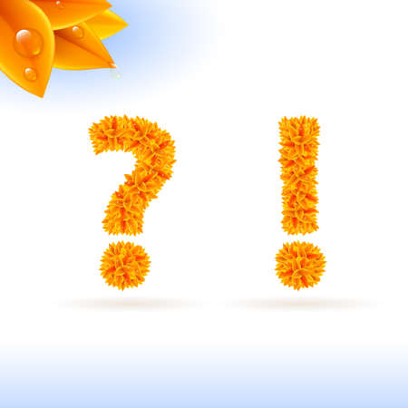 exclamation mark: Sans serif font with autumn leaf decoration on white background. Question and exclamation marks