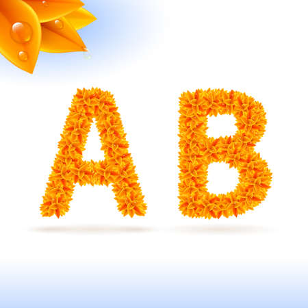 write abc: Sans serif font with orange leaf decoration on white background. A and B letters Illustration
