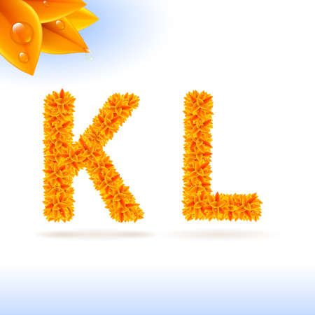 serif: Sans serif font with orange leaf decoration on white background. K and L letters