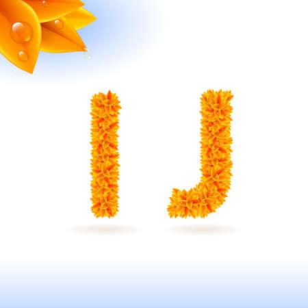 sans serif: Sans serif font with orange leaf decoration on white background. I and J letters