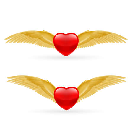 Two red hearts with golden yellow wings. Vector