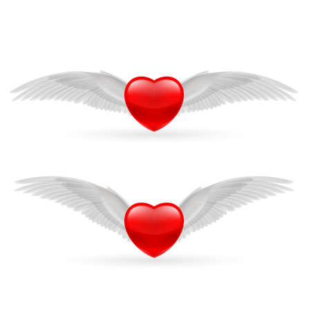 Two red hearts with white dove wings. Vector