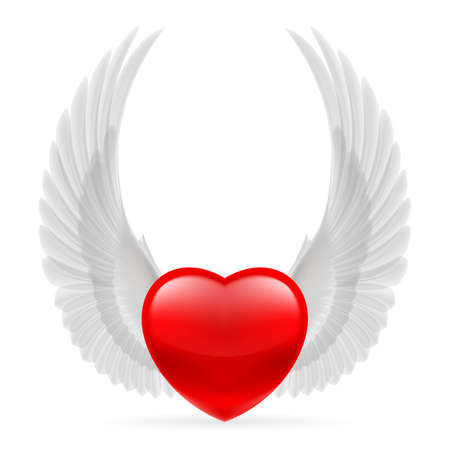 Red heart with white dove wings  Vector
