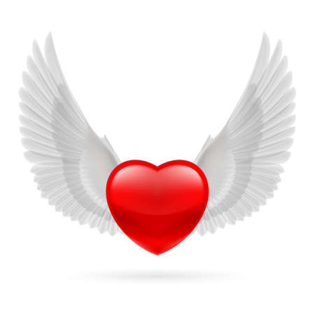 Red heart with white raised dove wings. Vector