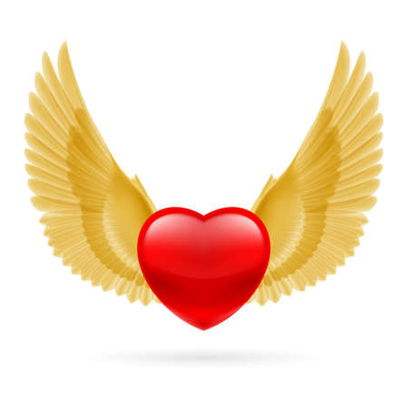 Red heart with raised golden yellow wings. Vector