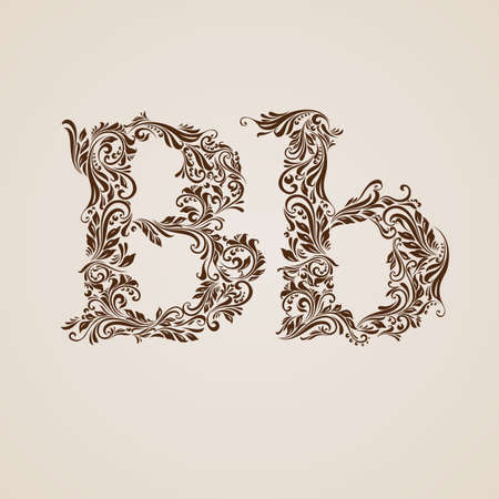 letter b: Handsomely decorated letter b in upper and lower case.