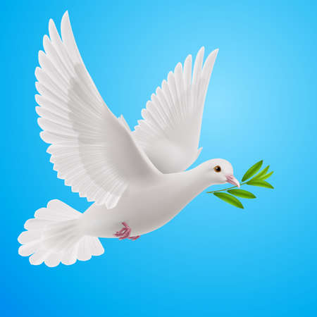 Paloma de la paz volando con una ramita verde después de las inundaciones en un fondo azul