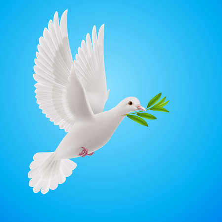 Dove of peace flying with a green twig after flood on sky