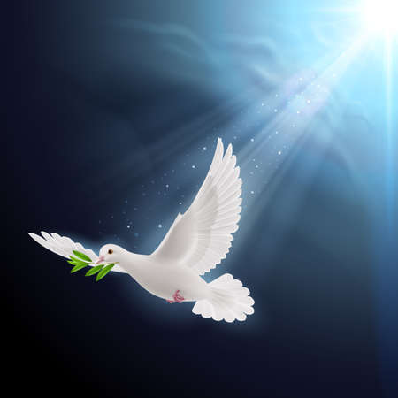 Dove of peace flying with a green twig after a flood