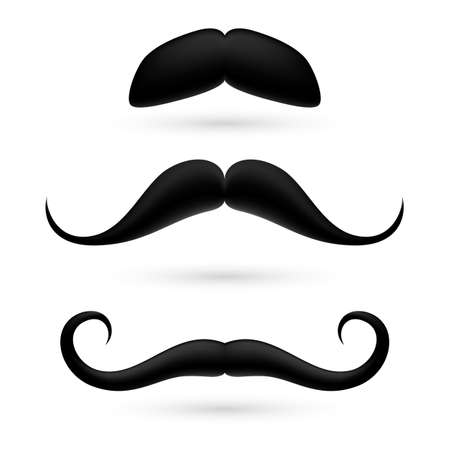 A set of black moustache on white. Stock Vector - 29200471