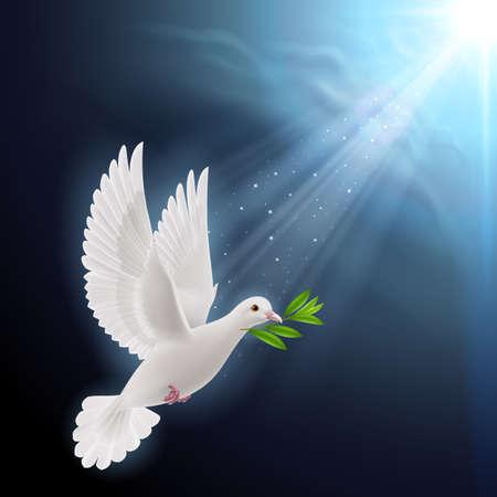 暗い背景の洪水後に緑の枝を飛んで平和の鳩