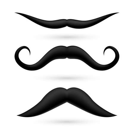 A set of three fake moustache on white background. Stock Vector - 29200588