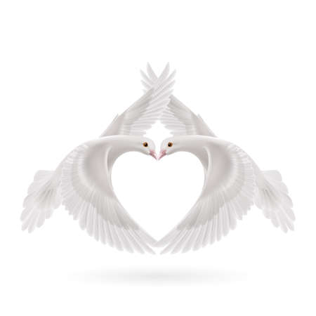 grace: White doves makes the shape of the wings of the heart