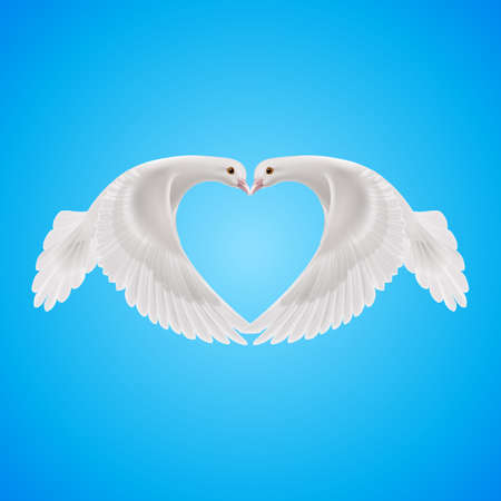2 objects: Two white doves makes form of the heart in sky Illustration