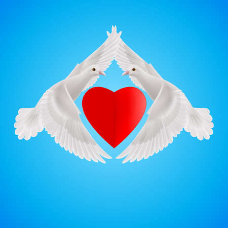 white pigeon: Two white doves form the shape of the wings of the red heart