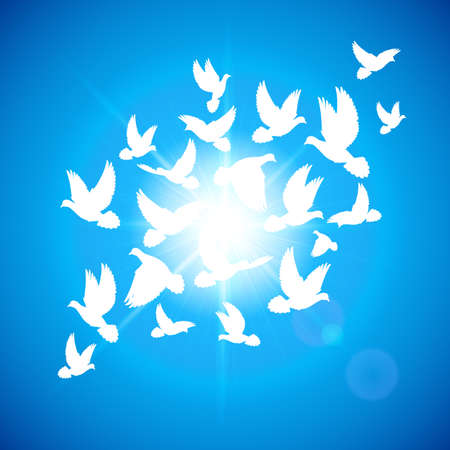 Many white dove fly in  blue sky Vector