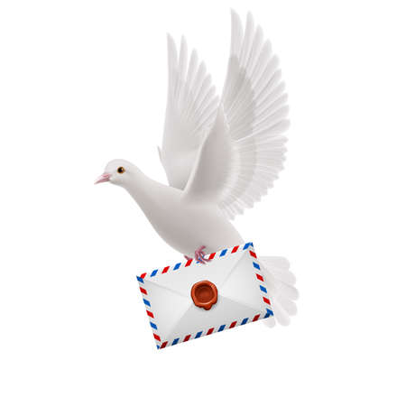 mailer: White pigeon flying with letter in beak