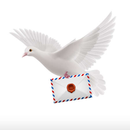 mailer: White pigeon fly with letter in beak