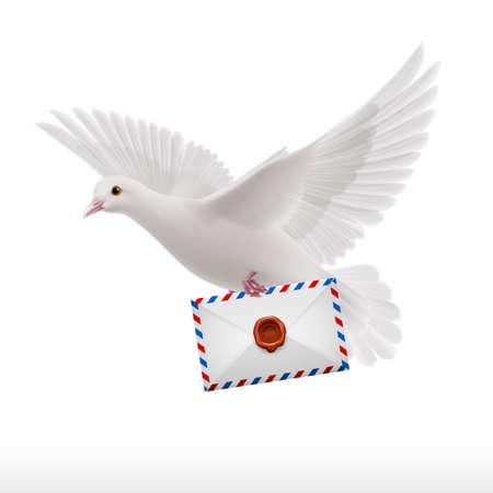 Witte duif vliegen met brief in bek