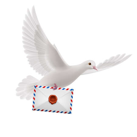 mailer: Dove fly with male in beak on white background
