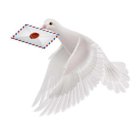 mailer: Pigeon fly with letter in beak on white background Illustration